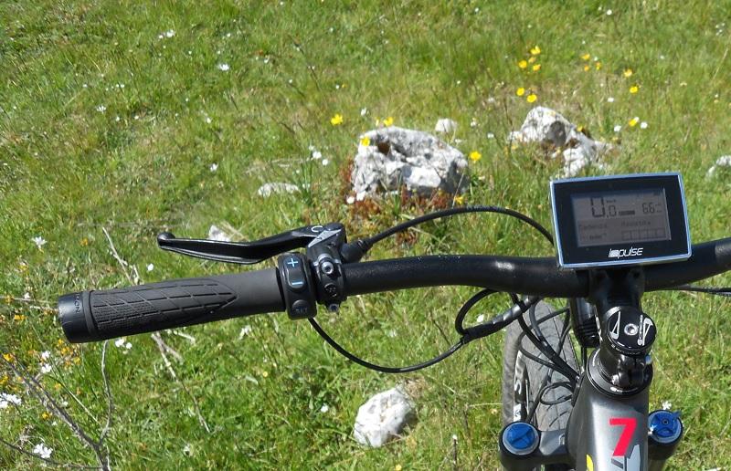 Ebike control system