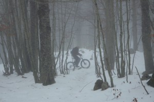 fat ebike on the snow