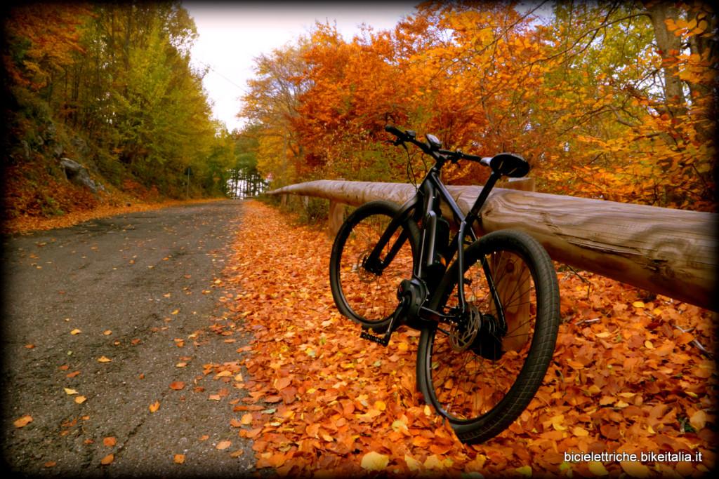 ebike in autumn